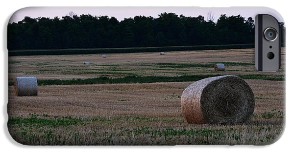 Crops iPhone Cases - Out in the Fields iPhone Case by Richard Andrews