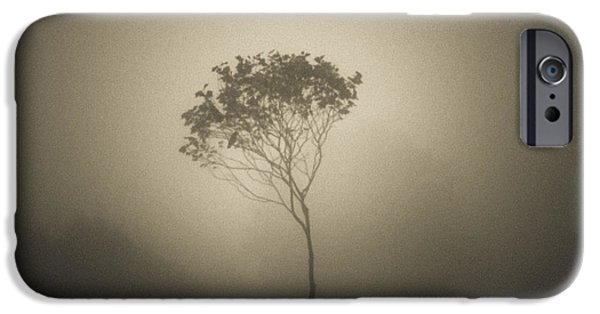 Bare Tree iPhone Cases - Out of the gloom iPhone Case by Chris Fletcher