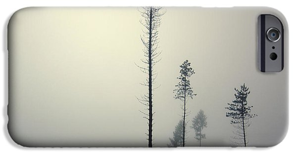 Mist iPhone Cases - Out of the Gray Ashes iPhone Case by Michal Karcz