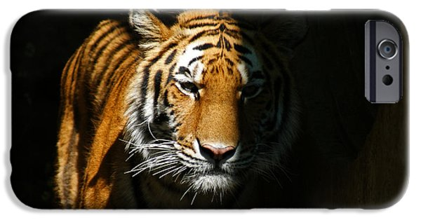 The Tiger iPhone Cases - Out of the Shadows iPhone Case by Ernie Echols