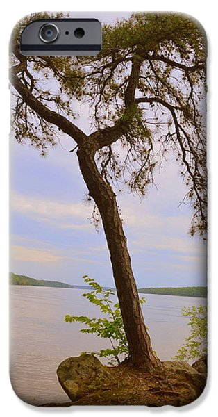 Hudson River iPhone Cases - Overlooking the Hudson iPhone Case by Linda Covino