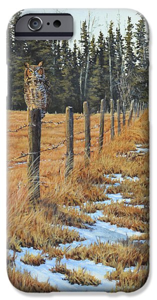 Mental Paintings iPhone Cases - Owl at Johnson Farm iPhone Case by Jim Young