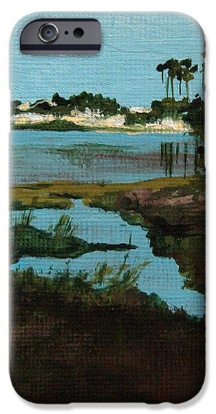 Oyster Lake iPhone Case by Racquel Morgan
