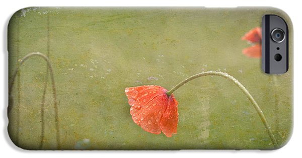 Rainy Day iPhone Cases - Paint Me A Poppy iPhone Case by ArtissiMo Photography