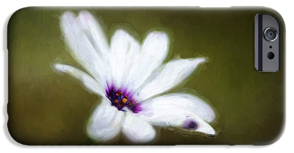 Floral Photographs iPhone Cases - Painted Daisy iPhone Case by Darren Fisher
