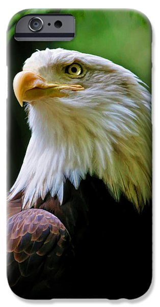 United iPhone Cases - Painted Eagle iPhone Case by Athena Mckinzie