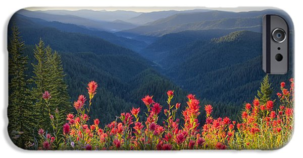 Best Sellers -  - River View iPhone Cases - Painted Forest iPhone Case by Idaho Scenic Images Linda Lantzy