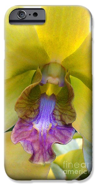 Ocean Sunset iPhone Cases - Pale Yellow Orchid with Lavender Center iPhone Case by Jennifer  Bright