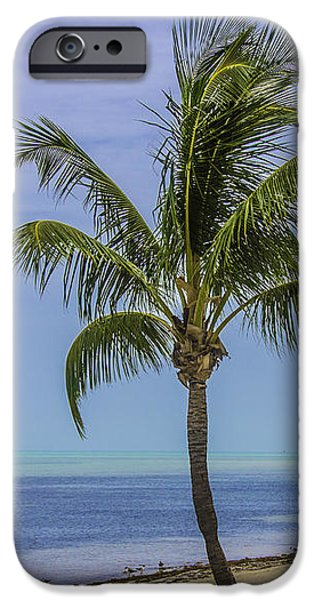 Key Signature iPhone Cases - Palm Breeze iPhone Case by Paula Porterfield-Izzo