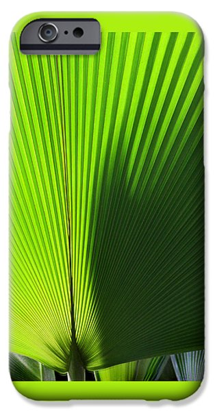 Stripes iPhone Cases - Palm Fronds Square iPhone Case by Karen Adams