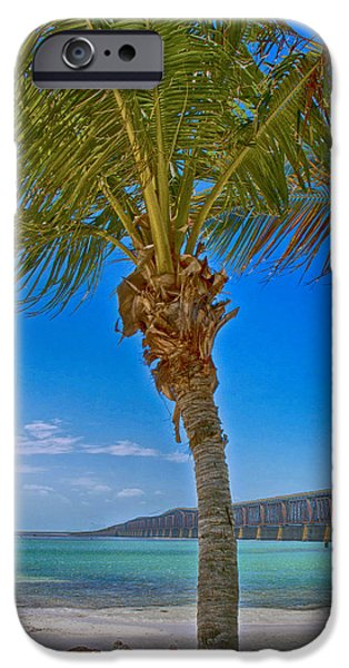 Key Signature iPhone Cases - Palm Tree Bridge and Sand iPhone Case by Paula Porterfield-Izzo