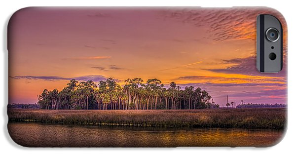 Floods Photographs iPhone Cases - Palms Delight iPhone Case by Marvin Spates