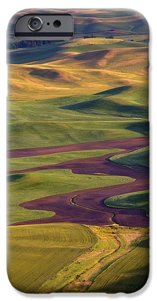 Crops iPhone Cases - Palouse Hills iPhone Case by Mike  Dawson