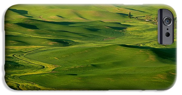 Crops iPhone Cases - Palouse Spring iPhone Case by Mike  Dawson