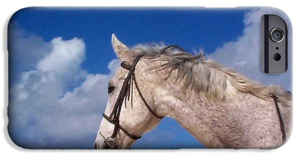 Horses iPhone Cases - Pancho iPhone Case by Mary-Lee Sanders