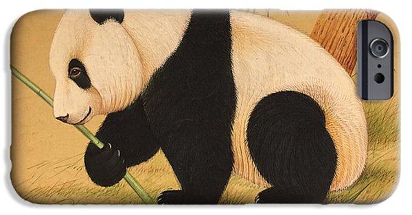Animal Drawings iPhone Cases - Panda in eating mood iPhone Case by Jai Singh