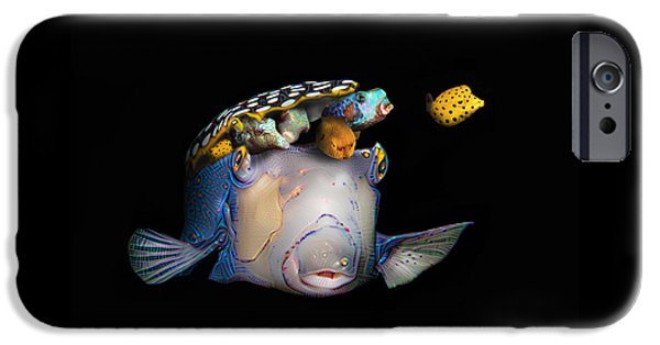 Cut-outs iPhone Cases - Pandoras box fish iPhone Case by Dray Van Beeck