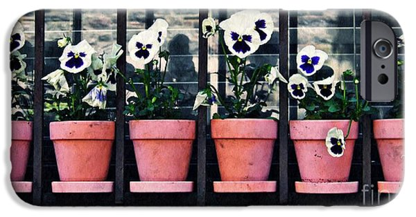 Ledge iPhone Cases - Pansies on the Window Ledge iPhone Case by Sarah Loft