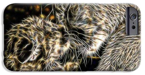 Abstract Digital Photographs iPhone Cases - Panther Cub and Mother  iPhone Case by D Hackett