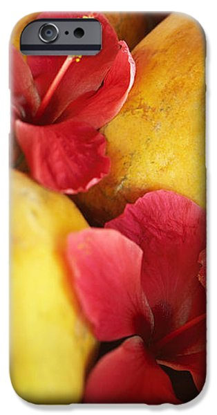 Papaya Fruit and Hibiscus iPhone Case by Kyle Rothenborg - Printscapes