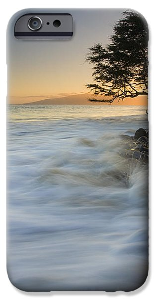 PAradise Gold iPhone Case by Mike  Dawson