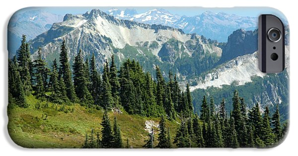 Meadow Photographs iPhone Cases - Paradise meadows iPhone Case by Frank Townsley