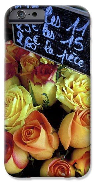 Paris Roses iPhone Case by Kathy Yates