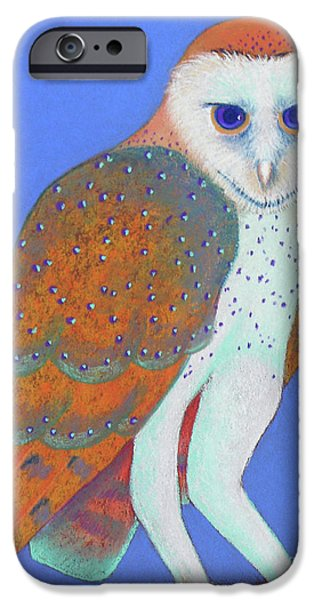 Barns Pastels iPhone Cases - Parliament of Owls detail 1 iPhone Case by Tracy L Teeter