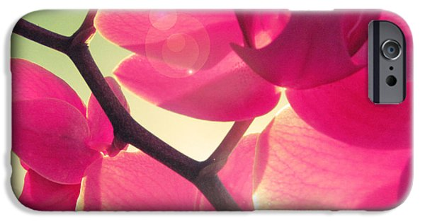 Fuchsia iPhone Cases - Passionato iPhone Case by Amy Tyler