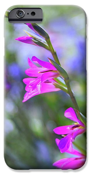 Botanical Digital Art iPhone Cases - Pastel Spring iPhone Case by Jessica Jenney