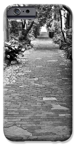 Patchwork Pathway iPhone Case by Dustin K Ryan