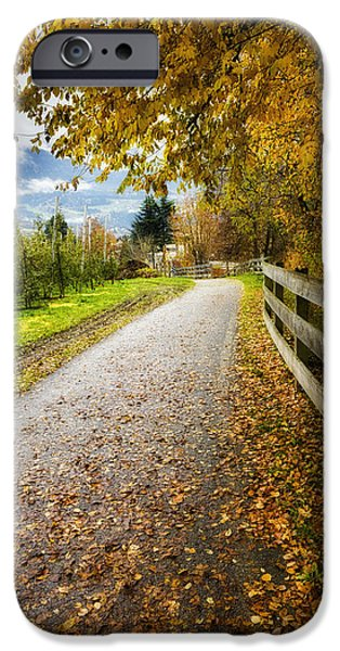 Alley Pyrography iPhone Cases - Path and autumn yellow leaves in South Tyrol in Italy iPhone Case by Riccardo Zimmitti