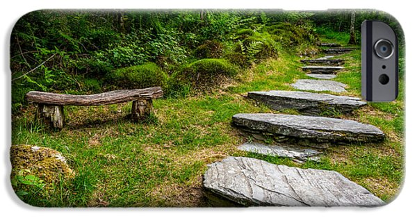 Bench iPhone Cases - Path Into The Forest iPhone Case by Adrian Evans