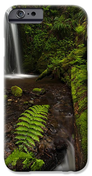 Forest iPhone Cases - Path of Life iPhone Case by Mike Reid