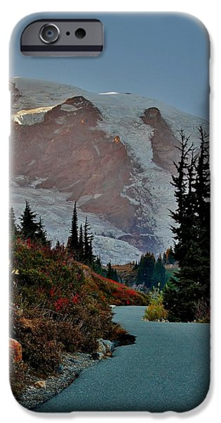 Pathway iPhone Cases - Path to Paradise iPhone Case by Stacie Gary
