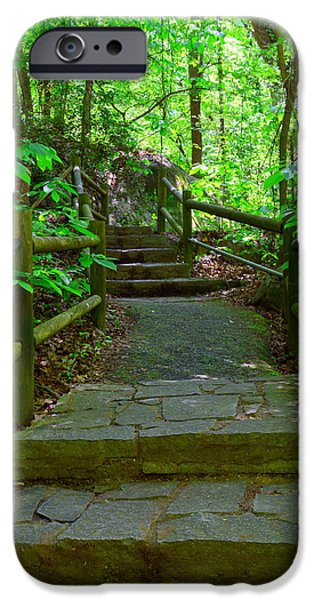 Pathway iPhone Cases - Pathway To Nature iPhone Case by Lisa Wooten