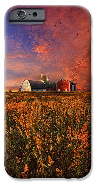 Meadow Photographs iPhone Cases - Patience iPhone Case by Phil Koch