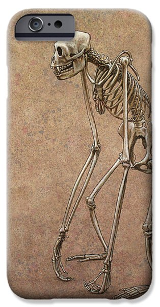 Animals Drawings iPhone Cases - Patient iPhone Case by James W Johnson