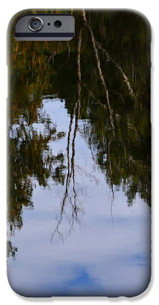 Nature Abstracts iPhone Cases - Peace of Mind iPhone Case by Richard Andrews