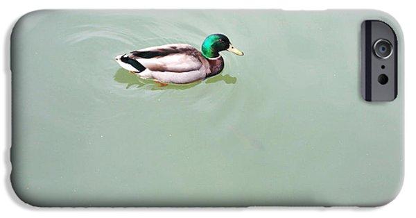 Birds Sculptures iPhone Cases - Peaceful Duck iPhone Case by Nigel Hardt