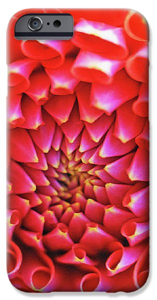 Peachy Dahlia iPhone Case by Kathy Yates
