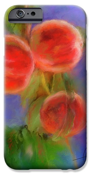 Peachy Keen iPhone Case by Colleen Taylor