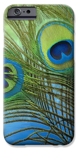 Peacock iPhone Cases - Peacock Candy Blue and Green iPhone Case by Mindy Sommers