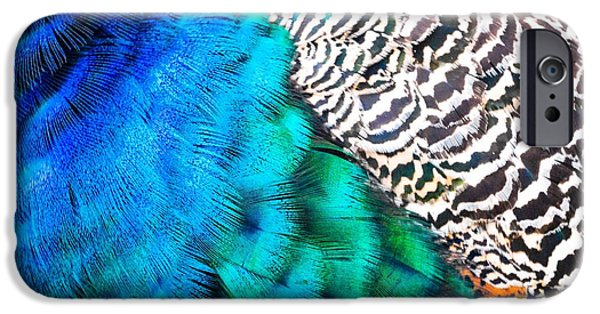 Blue Abstracts iPhone Cases - Peacock Palette iPhone Case by Lisa Kilby