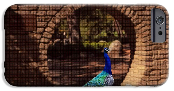 Alley Glass iPhone Cases - Peacock iPhone Case by Rezwana Muktadir
