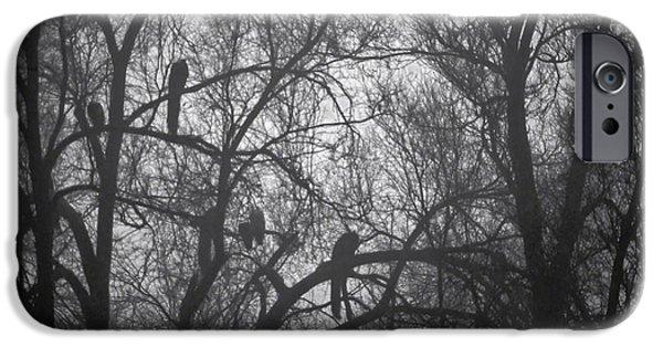 Fog Mist iPhone Cases - Peacocks In The Mist bw iPhone Case by Denise Dube