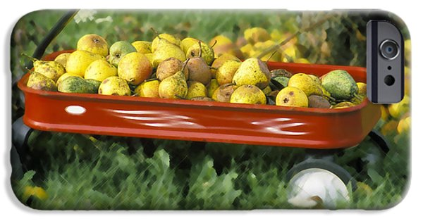 Harvest Time iPhone Cases - Pears in a Wagon iPhone Case by Gordon Wood
