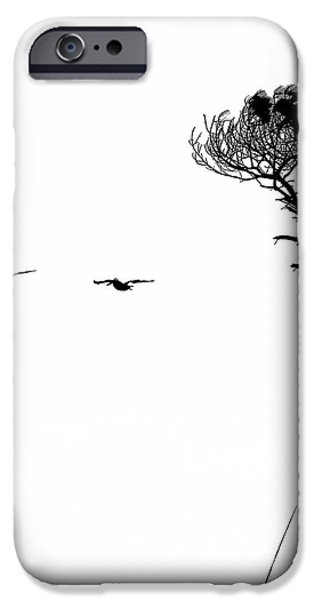 Island Pyrography iPhone Cases - Pelican Brief iPhone Case by David Bearden