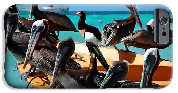 Pelicans iPhone Cases - Pelicans on a boat iPhone Case by Bibi Romer