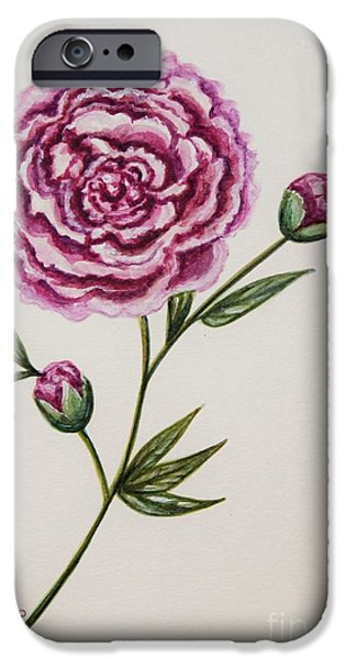 Nature Study Paintings iPhone Cases - Peony Botanical iPhone Case by Elizabeth Robinette Tyndall